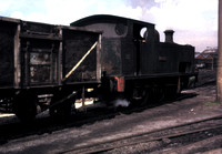 'Cornist', Hudswell Clarke 0-6-0 tank 1503 of 1923 at Holditch Colliery