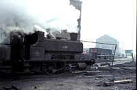 'King' passes through the coal washery at Ladysmith