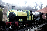 Andrew Barclay 0-6-0 saddle tank 'Salmon' on NYMR
