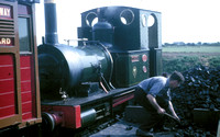 Tallyllyn Railway No 2 'Dolgoch' a 1960's view