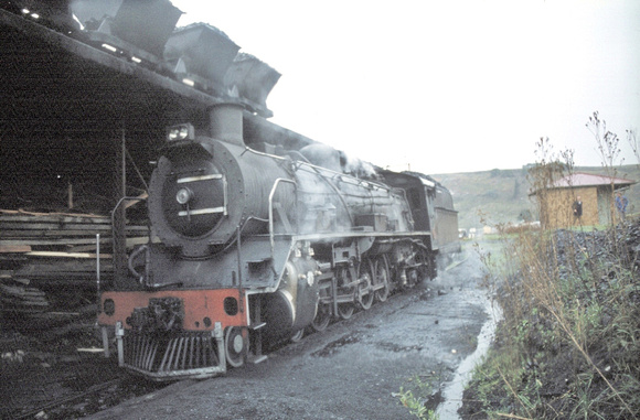 19D 3342 under the coal ramp at Maclear